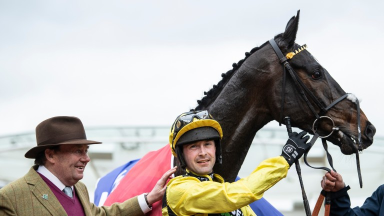 Shishkin strikes a pose after his victory in the Sky Bet Supreme Novices' Hurdle