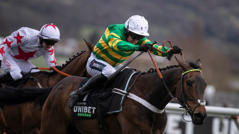 Ladies first: Epatante on her way to winning the Champion Hurdle