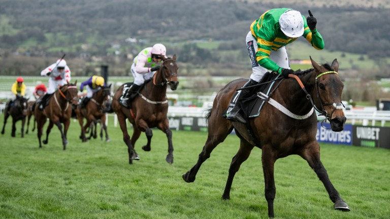 Epatante leads home a French-bred 1-2-4-5 in last season's Unibet Champion Hurdle