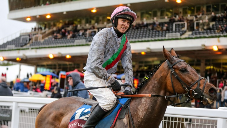 Petite Power: fancied for big-race success at Uttoxeter
