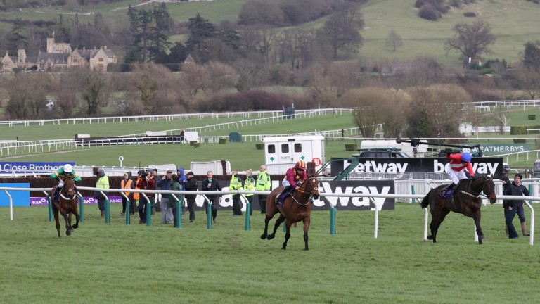 Champ (white cap) sets off up the run in at Cheltenham with a mountain to climb behind Allaho and Minella Indo