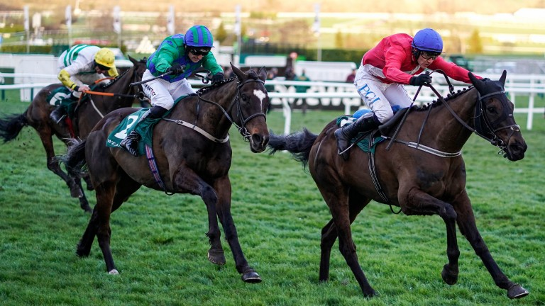 Ferny Hollow (right) defeats stablemate Appreciate It in the Champion Bumper