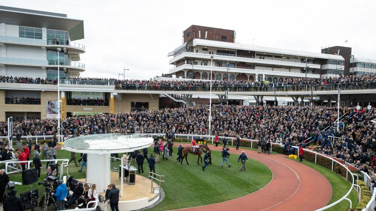 Spectators could return to racecourses as part of pilot events