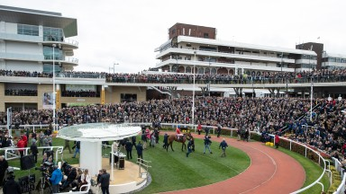 Crowds were down for a second successive day at Cheltenham on Wednesday
