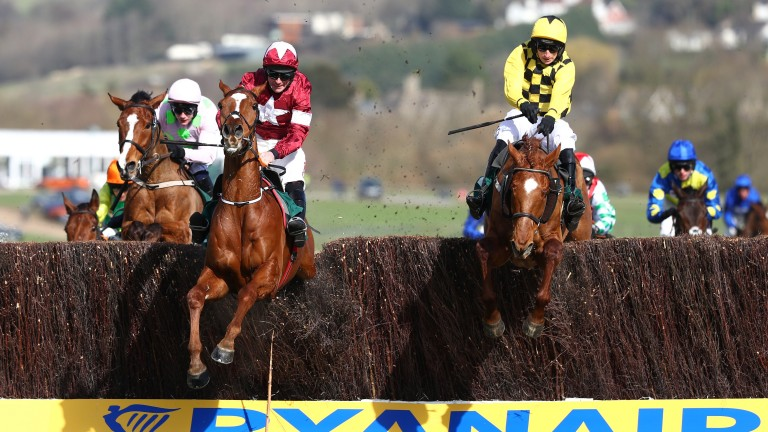 Samcro (maroon): one of seven entries in the Grade 2 Lough Construction Ltd Steeplechase