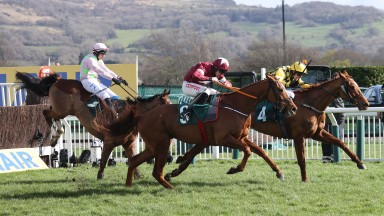 SAMCRO Ridden by Davy Russell wins at Cheltenham 12/3/20 /Photograph by Grossick Racing Photography 0771 046 1723