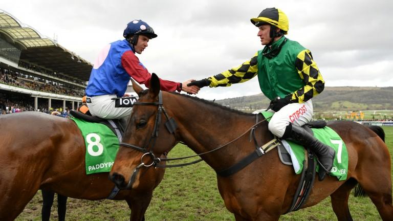 Lisnagar Oscar: last season's Stayers' Hurdle victor