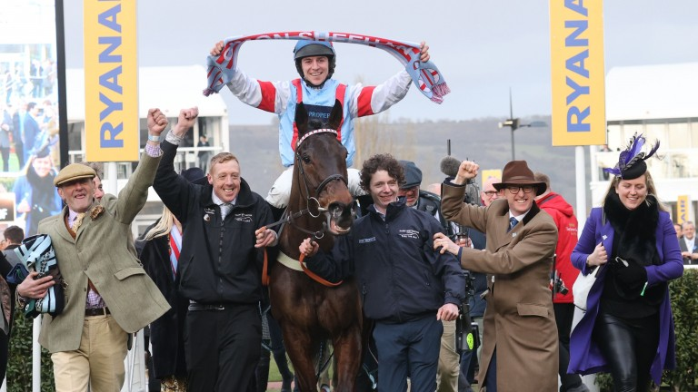 Simply The Betts: gave Harry Whittington a first Cheltenham festival winner in March
