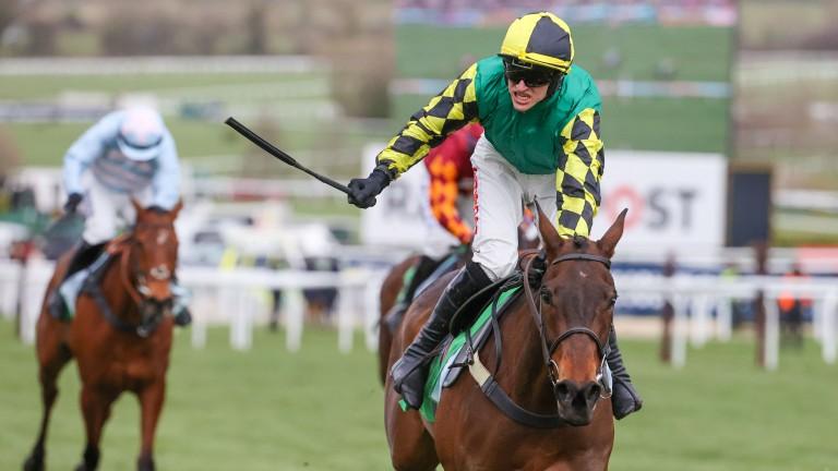 Lisnagar Oscar wins the Stayers' Hurdle at the Cheltenham Festival