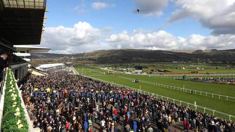 The 2021 Cheltenham Festival will take place without spectators