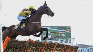 Burning Victory and Paul Townend were lucky winners of the Triumph Hurdle