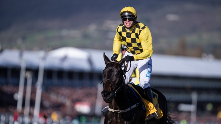 Cheltenham: will feature on the free-to-air coverage in Ireland