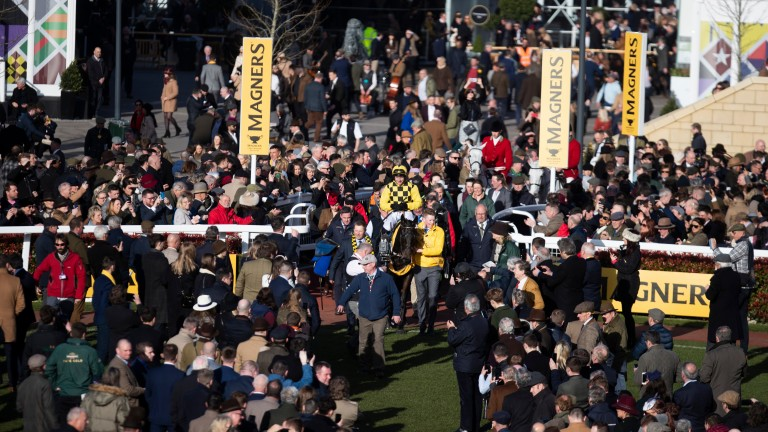 Cheltenham attracted 250,000 people over the four days of the festival