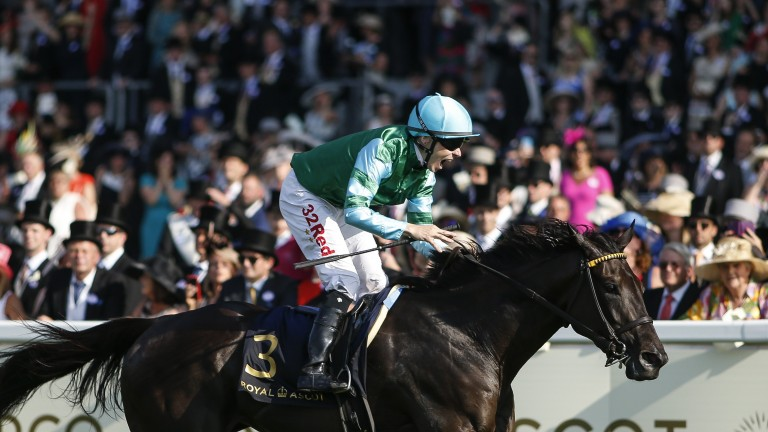 Con Te Partiro landed the Sandringham at Royal Ascot in 2017