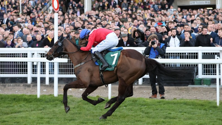 Ferny Hollow: showed sparkling turn of foot to score to win the Champion Bumper last season