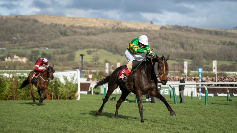 Easysland beats Tiger Roll in the Glenfarclas Chase at Cheltenham
