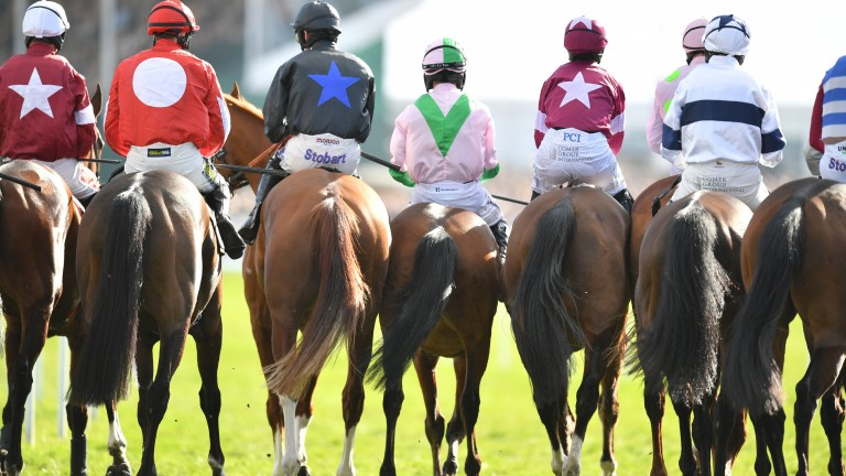 Jump racing in Britain: put back until July, the BHA announced on Thursday