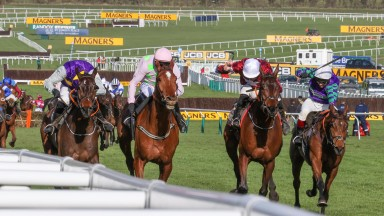 Thyme Hill (right): stayed on strongly in the Albert Bartlett Novices' Hurdle won by Monkfish (second left)