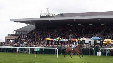 Punchestown: will play host to a Flat fixture in September for the first time since 2002