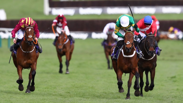 Champ: lived up to his name at Cheltenham