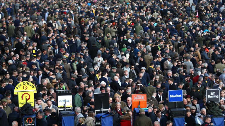 The four days of the Cheltenham Festival are a punter's paradise