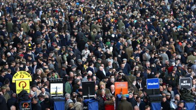 A huge bank of spectators on Gold Cup day of the Cheltenham Festival