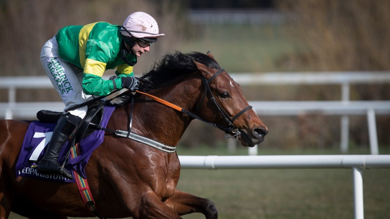 Wajaaha: a hugely impressive winner at Leopardstown earlier this month