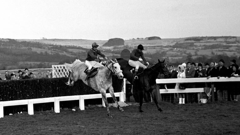 Stan Mellor and Stalbridge Colonist (nearsiide) take the last  upsides Woodland Venture (Terry Biddlecombe) in the 1967 Cheltenham Gold Cup