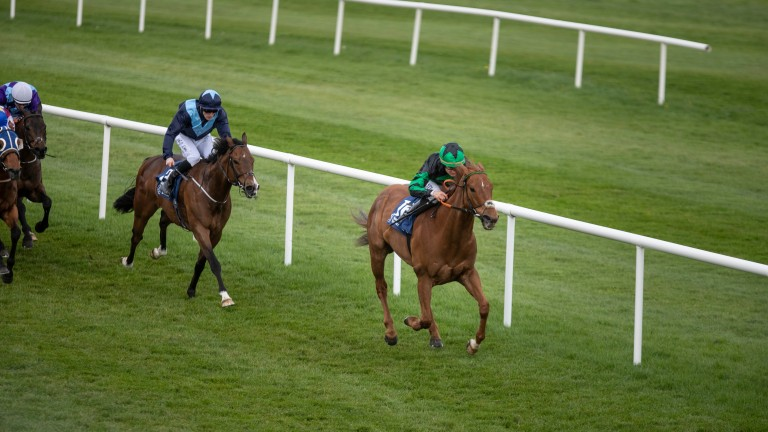 Mokhalad: has recorded two wins at Naas previously