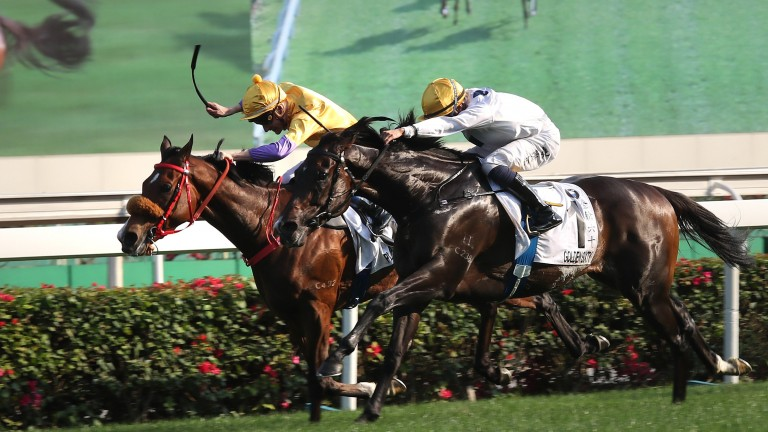 Golden Sixty and Vincent Ho (1) strike in a compelling Hong Kong Derby
