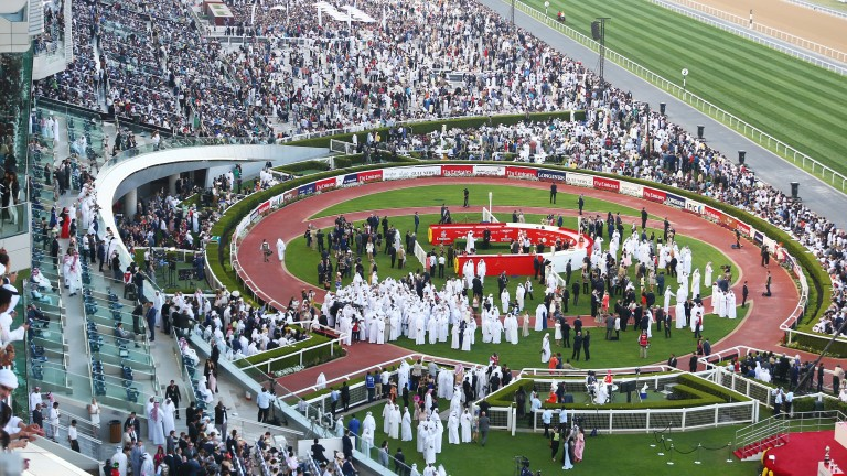 Dubai World Cup night: cuts have been made to prize-money
