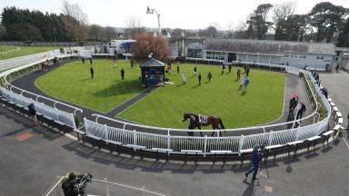 Riders in the parade ring ahead of the opening maiden contest at Naas on Monday
