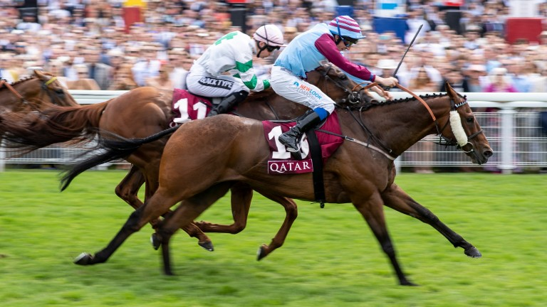 Poyle Vinnie wins the Stewards' Cup at Goodwood last summer