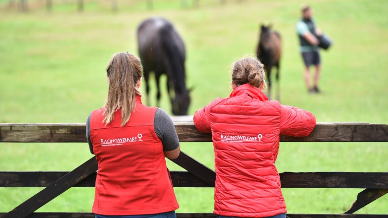 Racing Welfare consists of just 48 employees, over half of which are on the welfare team