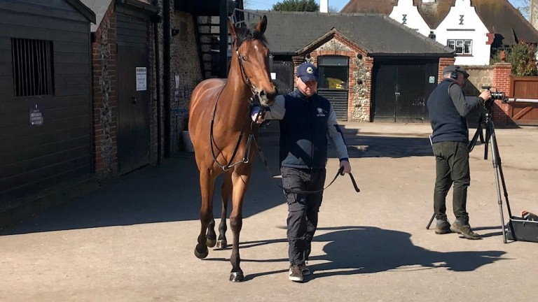 Lockdown and Pete McCulloch at Hugo Palmer's yard