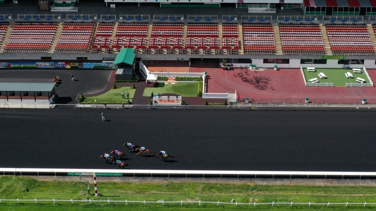 Horses continue to race on the Tapeta surface at Golden Gate Fields in front of empty stands while the coronavirus crisis goes on