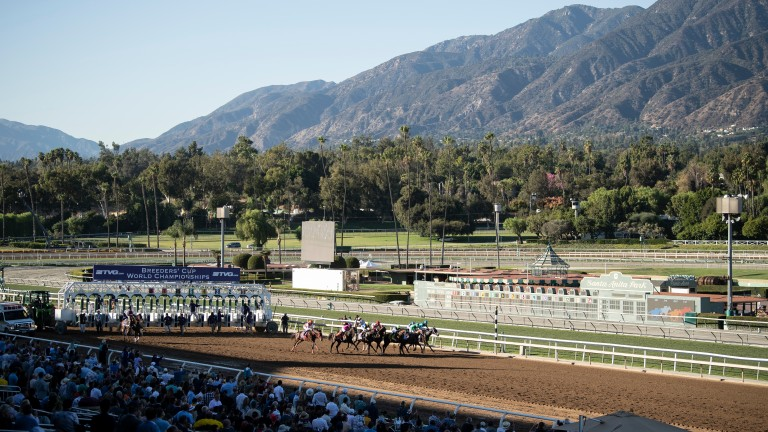 The runners break from the gates at the start of the Breeders' Cup Juvenile 2019 at Santa Anita