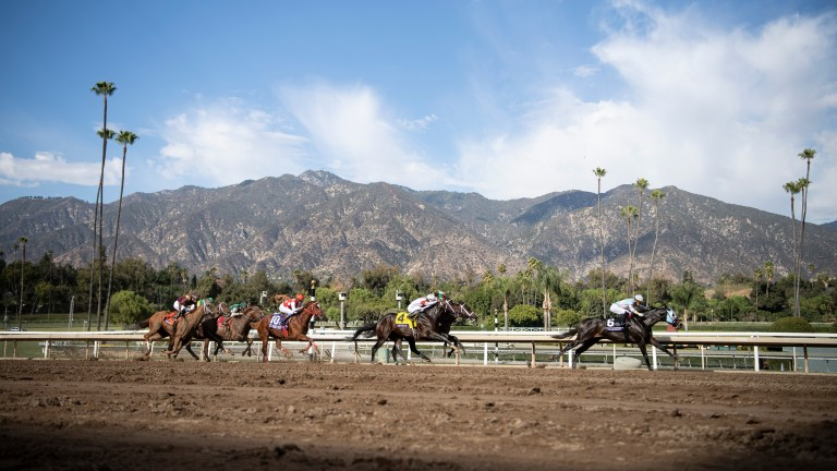 The San Gabriel mountains form the classic backdrop to the 2019 Breeders' Cup Sprint at Santa Anita won by Ricardo Santana jnr and Mitole (4)