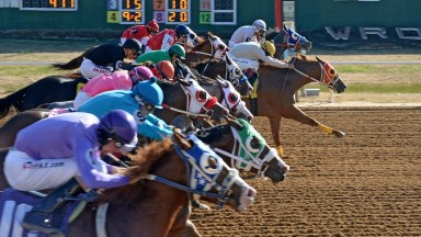 Runners and riders in the drive position at Will Rogers Downs