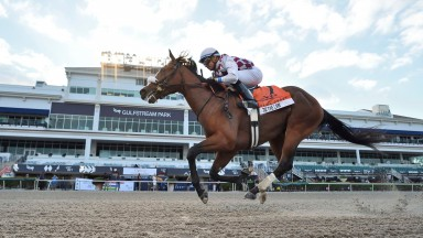 Tiz the Law, riddren by Manuel Franco, wins the Florida Derby horse race at Gulfstream Park 28/03/2020. Pic: Lauren King/Coglianese Photos