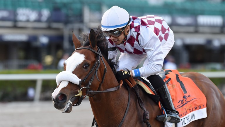 Tiz The Law: now the clear favourite for the Kentucky Derby