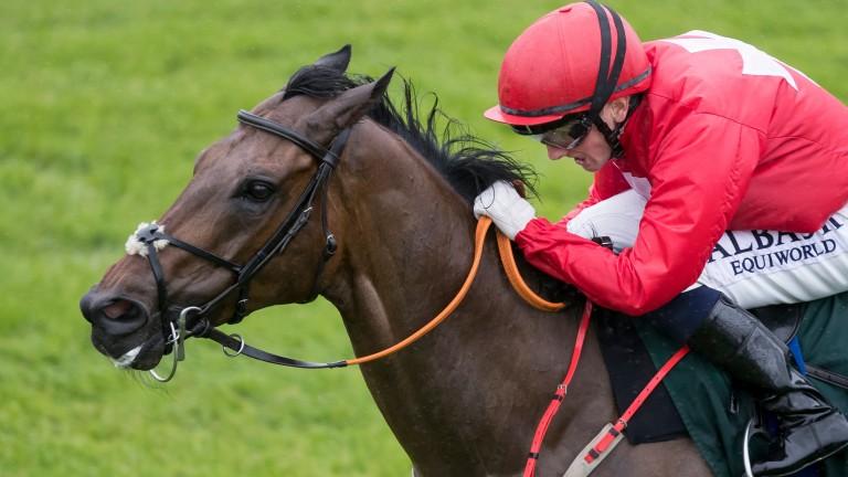Gordon Lord Byron: popular sprinter won over €2 million in prize-money
