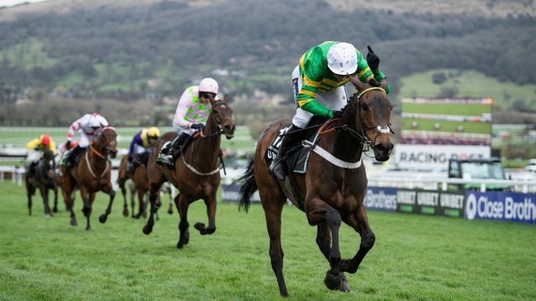 Epatante: can she defend her crown in the Champion Hurdle?