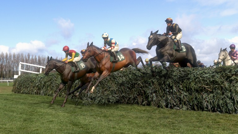 A significant television audience watched the Virtual Grand National on ITV on Saturday