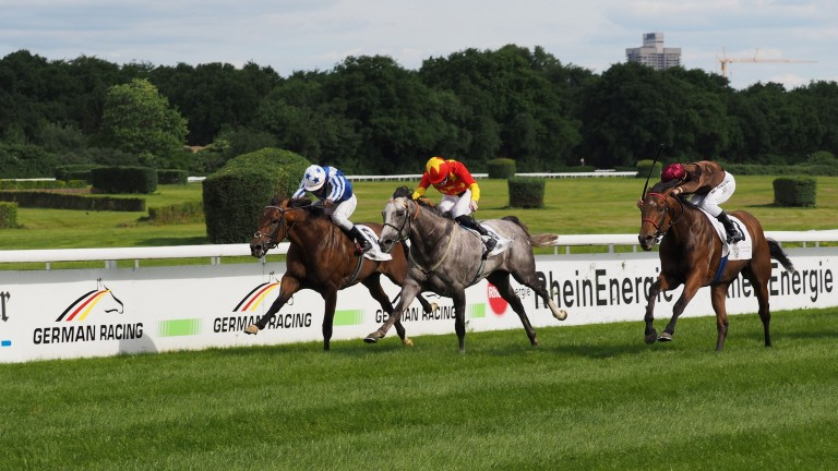 Germany: racing could return behind closed doors next month