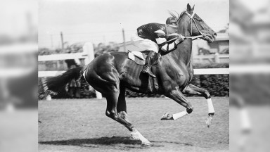 Shows Phar Lap with jockey Jim Pike riding at Flemington race track. Photo: Pratt, Charles Daniel, 1892-1968 photographer