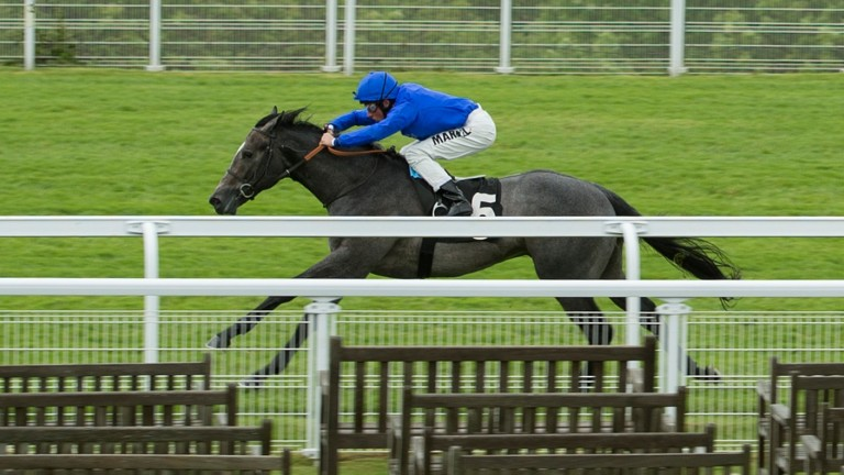 The well-bred Portamento breaks his maiden at Goodwood