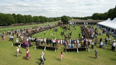 July course parade ring: an excellent place to see the next generation of racing stars up close