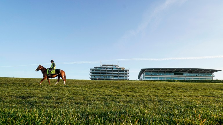 The scene in Epsom last week: the BHA on Wednesday indefinitely suspended racing in Britain