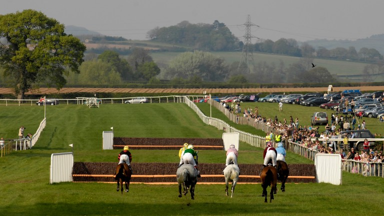 Heading down the home straight at Chaddesley Corbett point-to-point course